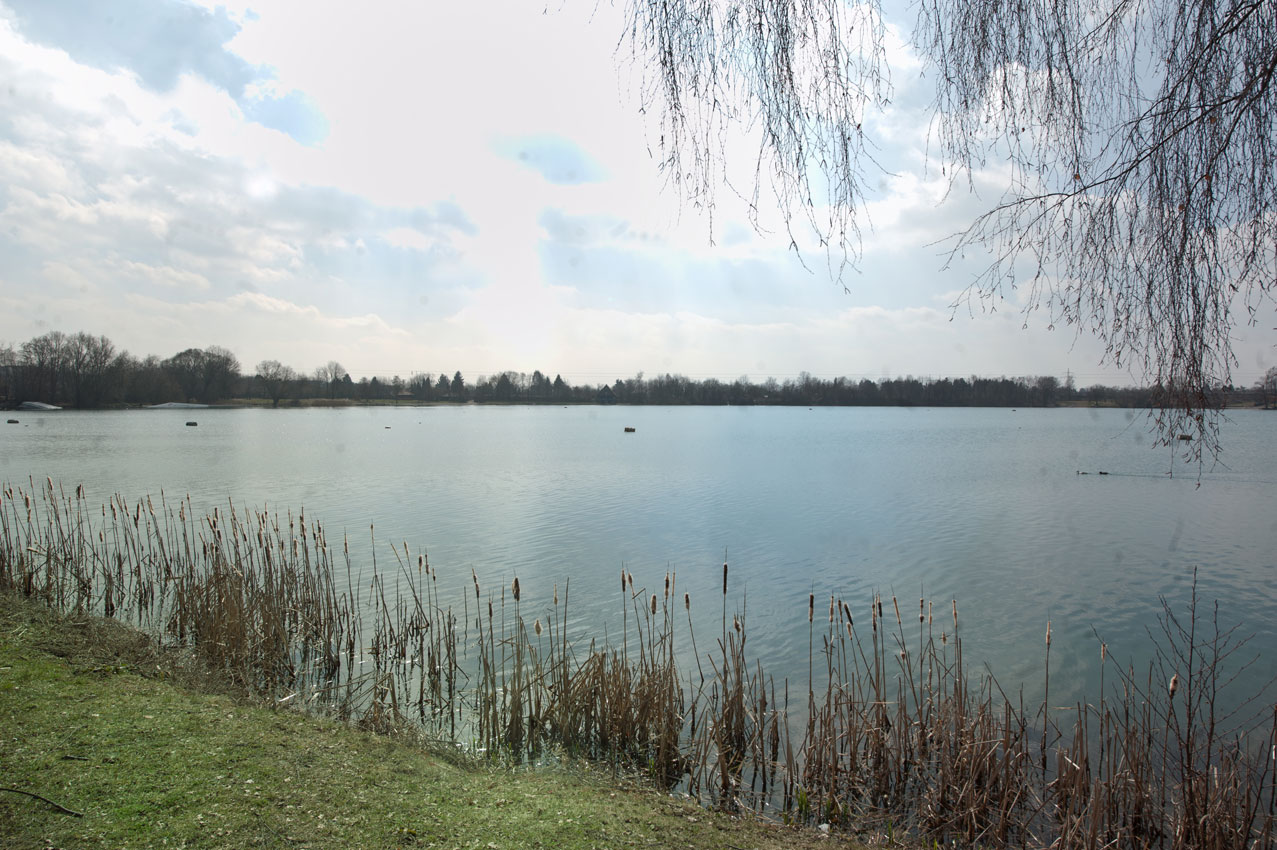 Friedberger See1